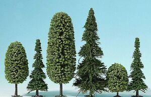 MIXED FOREST (10 ARBOLES)