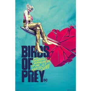 POSTER AVES DE PRESA (BIRDS OF PREY) BROKEN HEARTS 61 X 91 CM