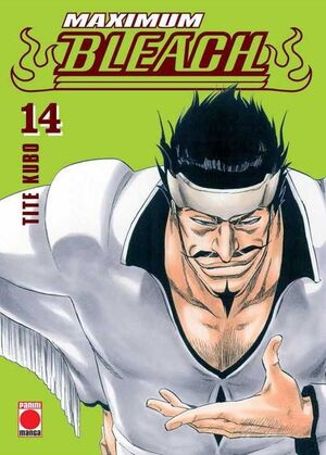 BLEACH MAXIMUM #14 (PANINI)