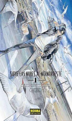 SIGUE LAS NUBES AL NORNOROESTE #01