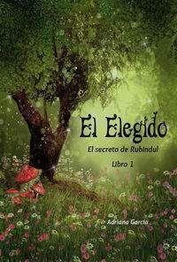 EL SECRETO DE RUBINDUL VOL.1: EL ELEGIDO